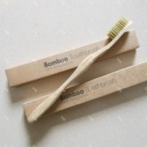 Five reasons to invest in an eco friendly tooth brush